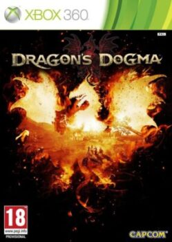 Dragon's Dogma 20